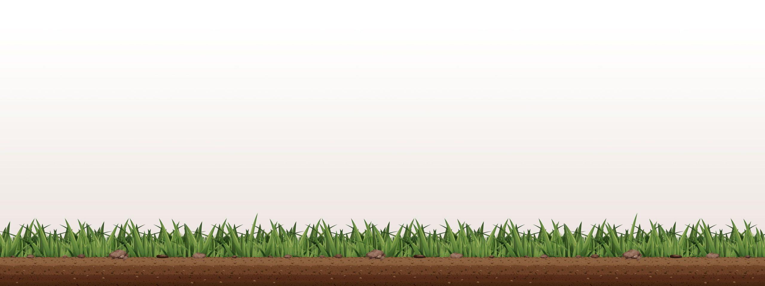 landscaper-grass-background-4